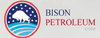 Bison Petroleum Corp. (OTCMKTS:BISN) Recovers After The Disastrous Crash