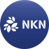 NKN Promises to Deliver Beta Version in Q1 2019 to Change the Internet